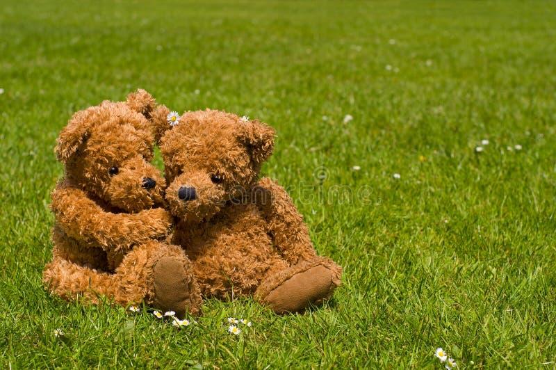 rzymianie teddybear zdjęcia stock