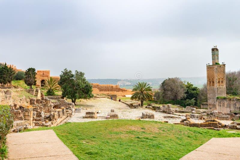 Rzymianin ruiny obok ruin meczet przy Chellah w Rabat Maroko obrazy royalty free