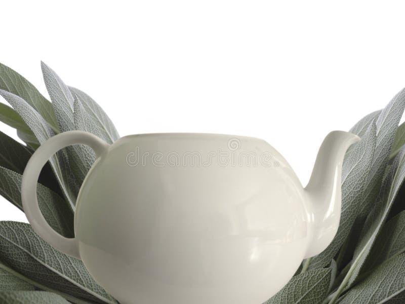 Sábio e teapot fotos de stock
