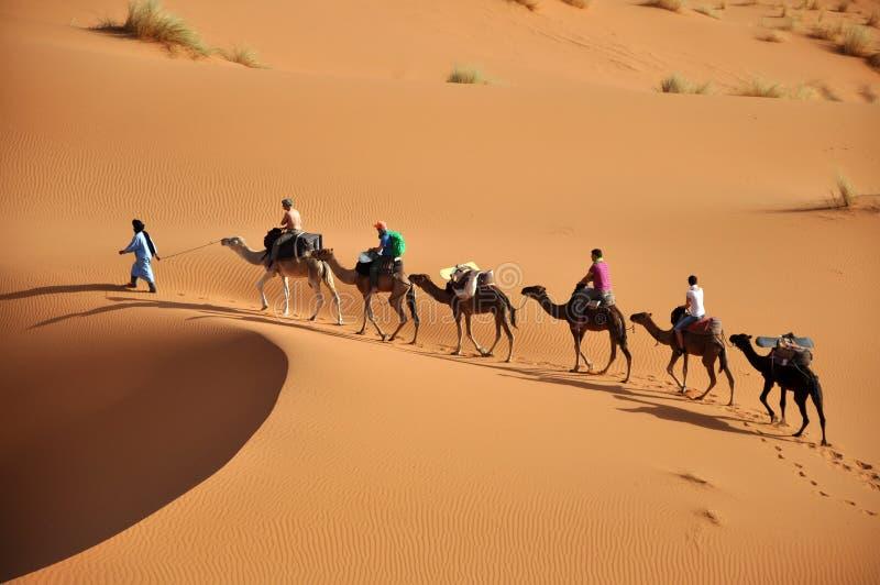 Sáhara foto de archivo libre de regalías