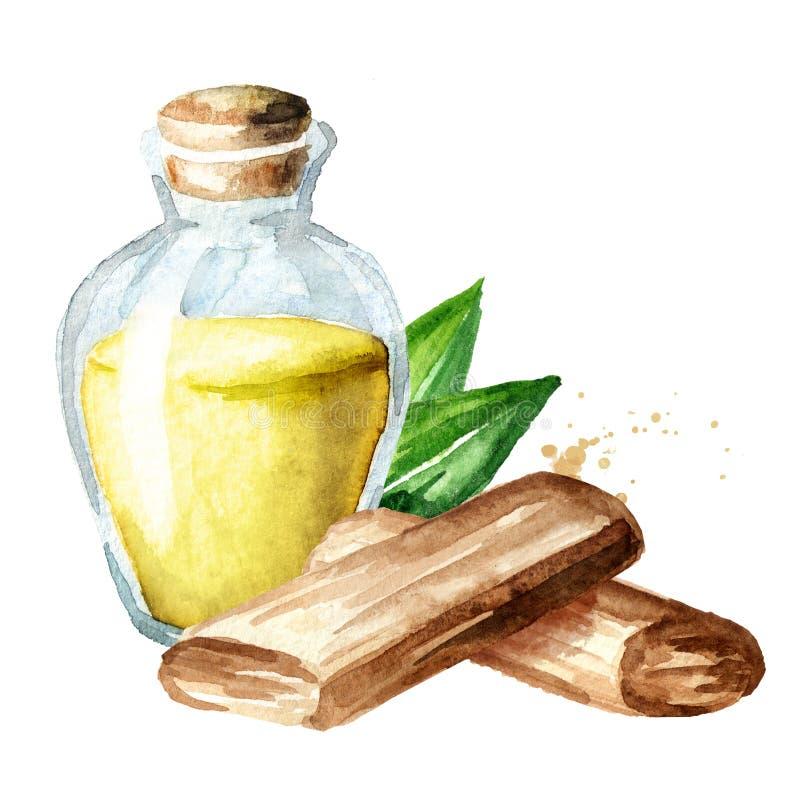 Sándalo o aceite esencial y palillos de Chandan con las hojas verdes Ejemplo dibujado mano de la acuarela aislado en el fondo bla ilustración del vector