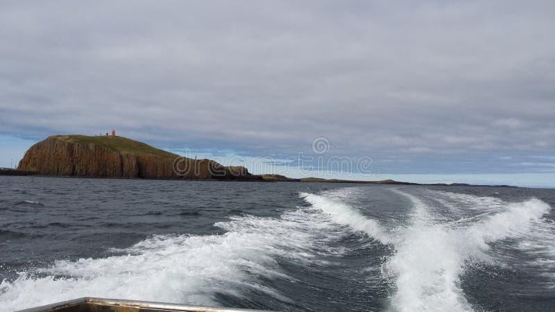 Súgandisey冰岛 库存照片