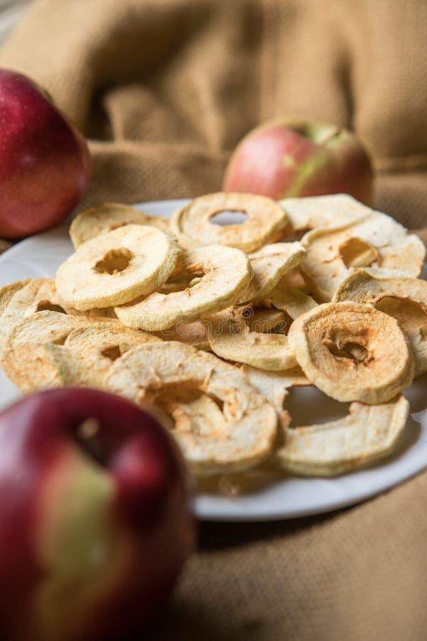 Säckväv Autumn Apple Harvest royaltyfri fotografi