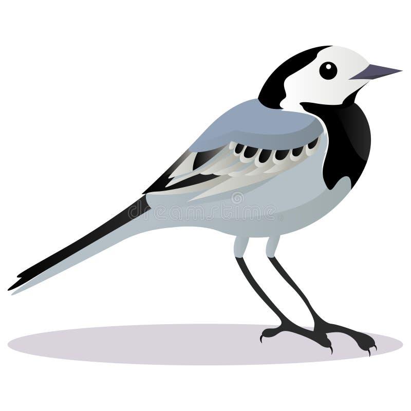 Sädesärlafågel stock illustrationer