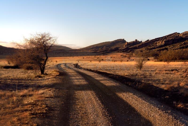 Sädes- fält på solnedgångvägen royaltyfria foton