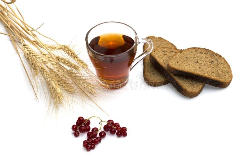 Sädesslag, brödskivor, drink och vinbär, stilleben arkivfoto