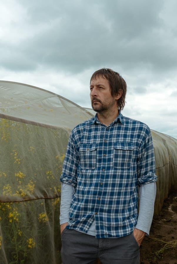 Säker bonde som poserar i rapsfrölantbrukfält royaltyfri foto
