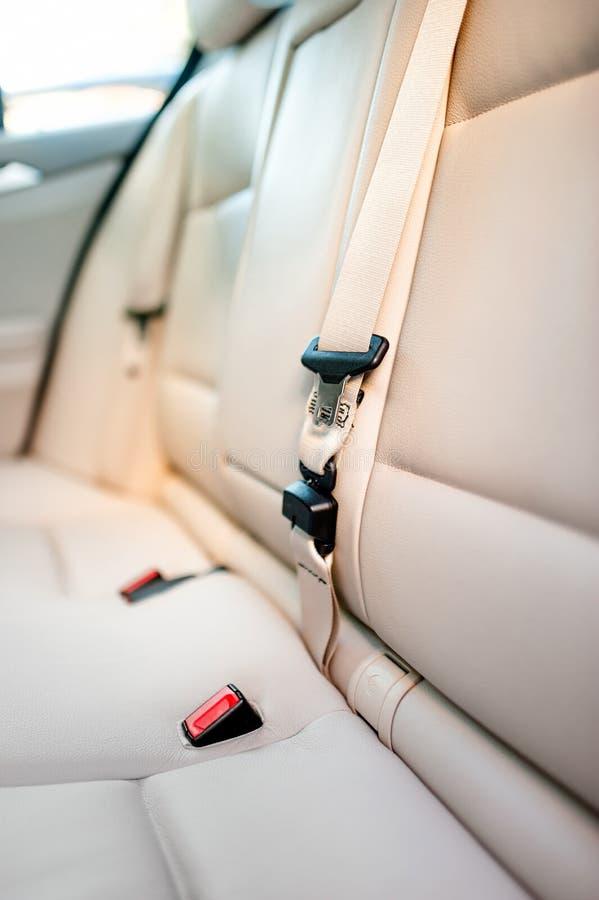 Säkerhetsbälte på bakre plats av den moderna bilen med den beigea läderinre royaltyfri bild