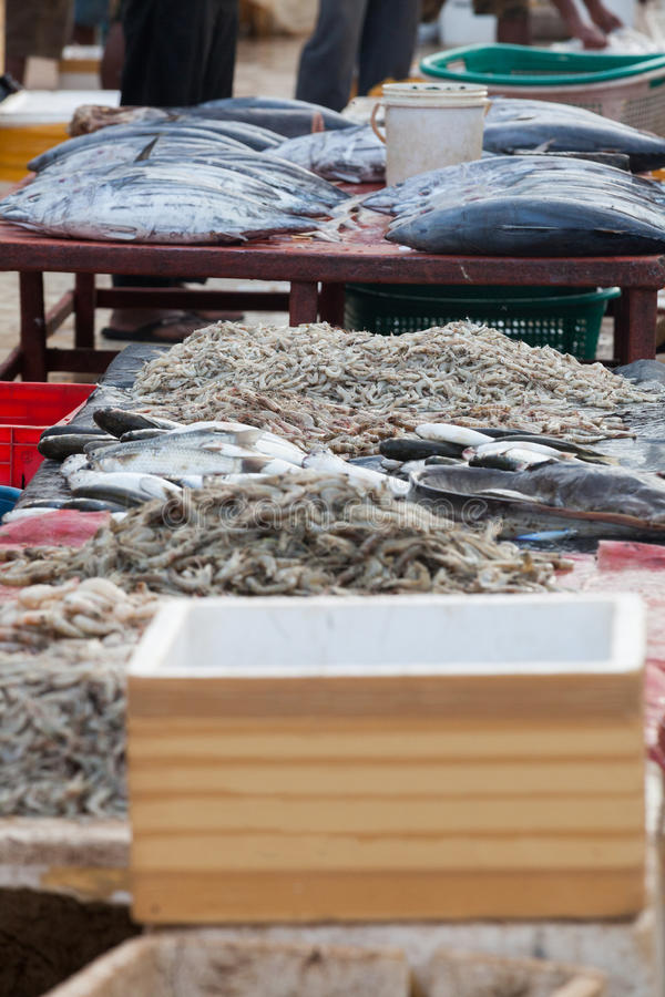 Sälja fisken, den utomhus- fiskmarknaden fotografering för bildbyråer