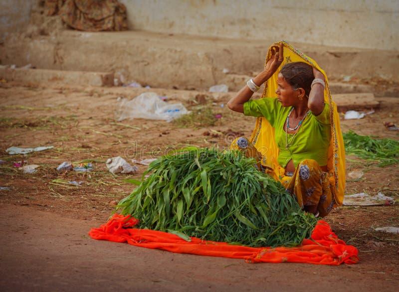 Säljare av gräsplaner på gatasammanträdet på jordningen royaltyfri bild
