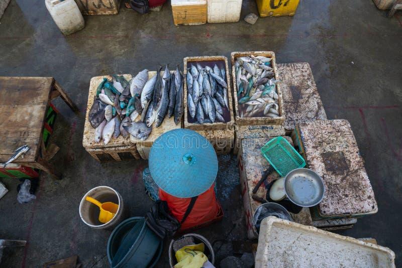 Säljare för en fisk i marknaden för jimbaranbali fisk Han säljer olika typer av den nya fisken som har precis fångats royaltyfri bild