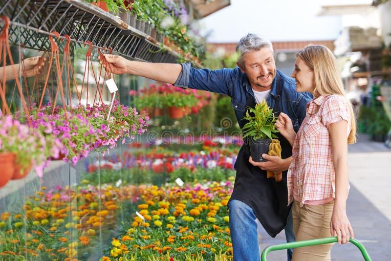 Säljaren i blomsterhandel hjälper kvinnan royaltyfria bilder