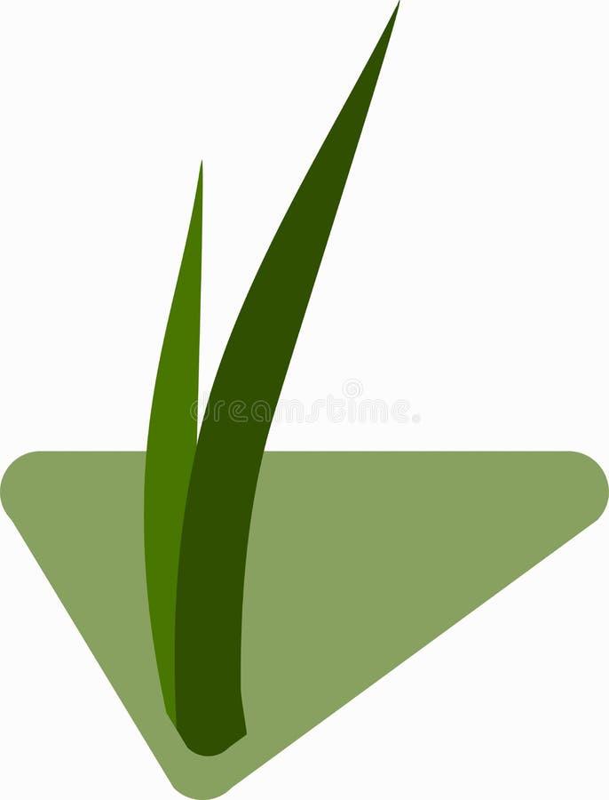 Sämlinge des Grases für das Züchten im abstrakten Vektor Ikone für die Landwirtschaft auf dem Hintergrund der grünen Raute vektor abbildung