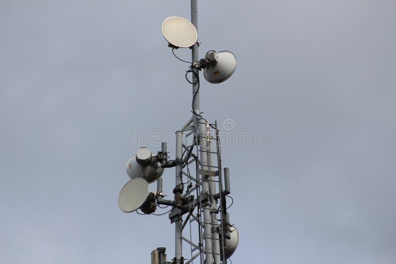 Sändaremast för signal för satellit- data royaltyfria bilder