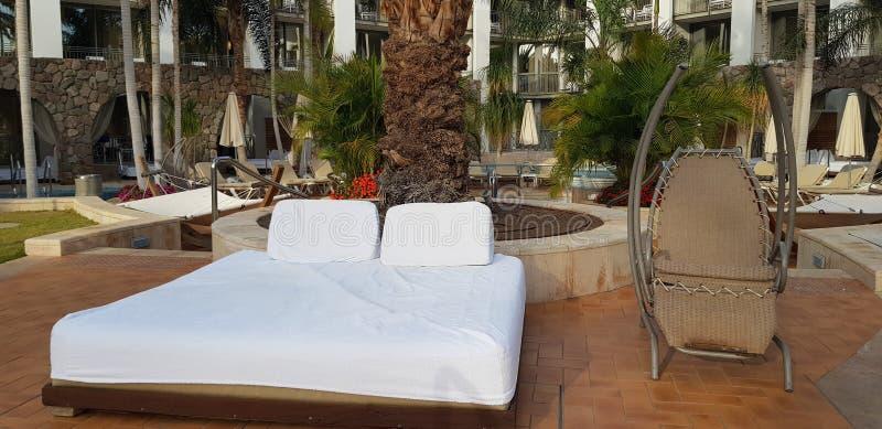 Säng för solbränt och att vila med den vita madrassen nära ett gungstolstag som är tomt i hotellträdgården arkivbilder