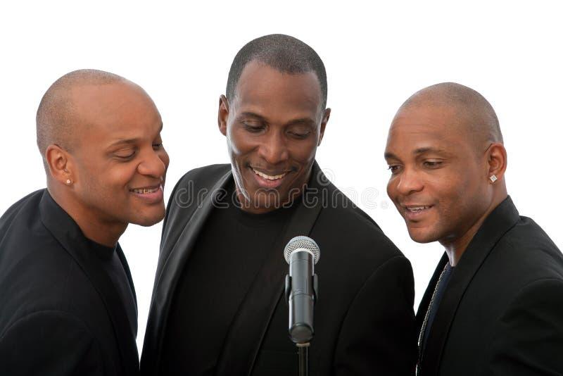 Sänger lizenzfreie stockbilder