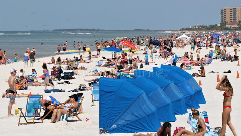 Säsongen för våravbrottet på den Clearwater stranden kommer med i soldyrkarna fotografering för bildbyråer