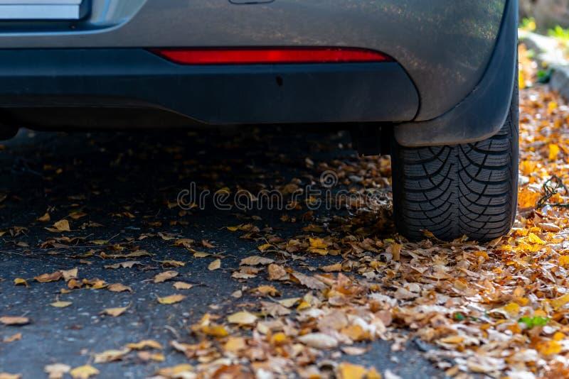 Säsonggummihjuländring Bilen med ny vinter tröttar på vägen för höstsidor Säkerhet på en hal höstväg arkivbild