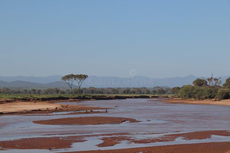 Säsongsbetonad flod i den Samburu nationalparken och kullehorisont royaltyfri fotografi