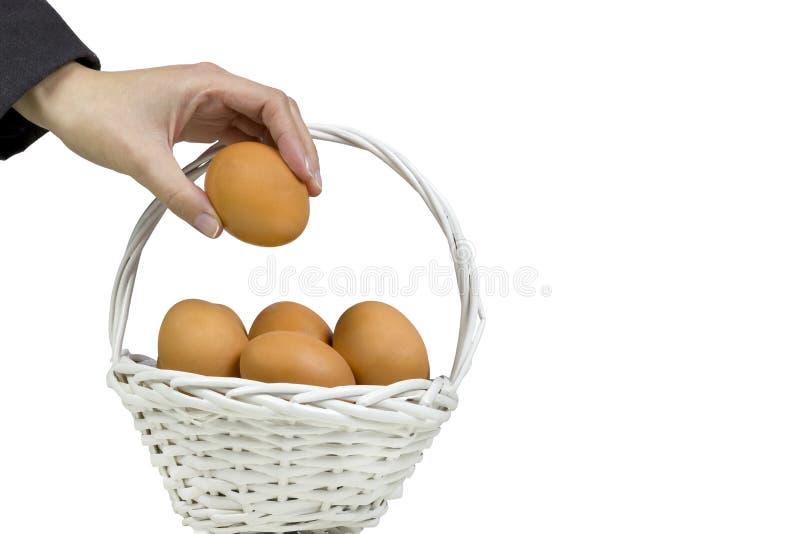 Sätta alla ägg i en korg royaltyfri bild