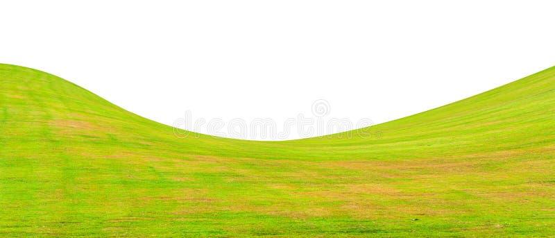 Sätta in av grönt gräs arkivfoto