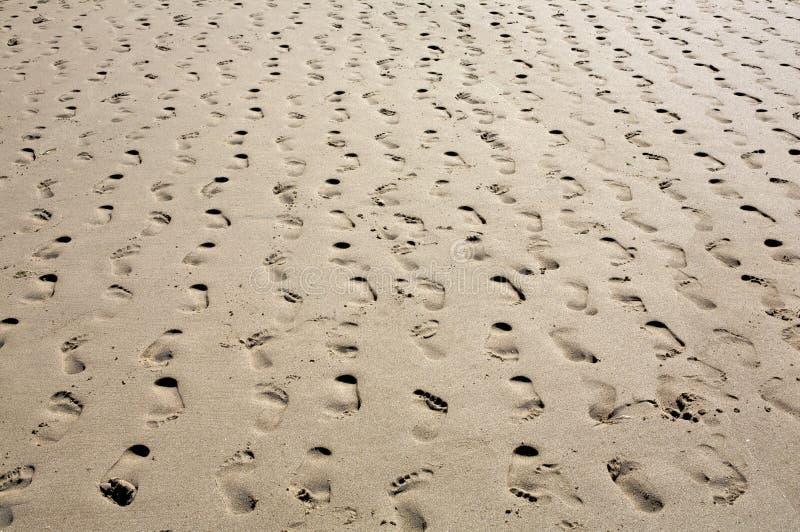 sätta på land åtskilliga sandiga recedingrader för fotspår royaltyfria bilder