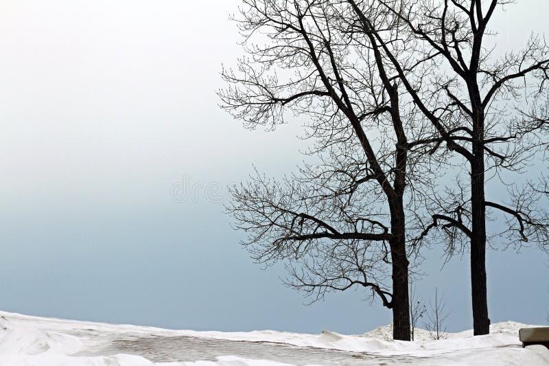 sätta på land den molniga kustlinjevädervintern royaltyfri foto