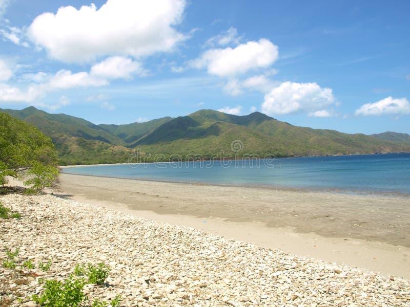 Sätta på land i Guanacaste Costa Rica, lösa livområden arkivfoto