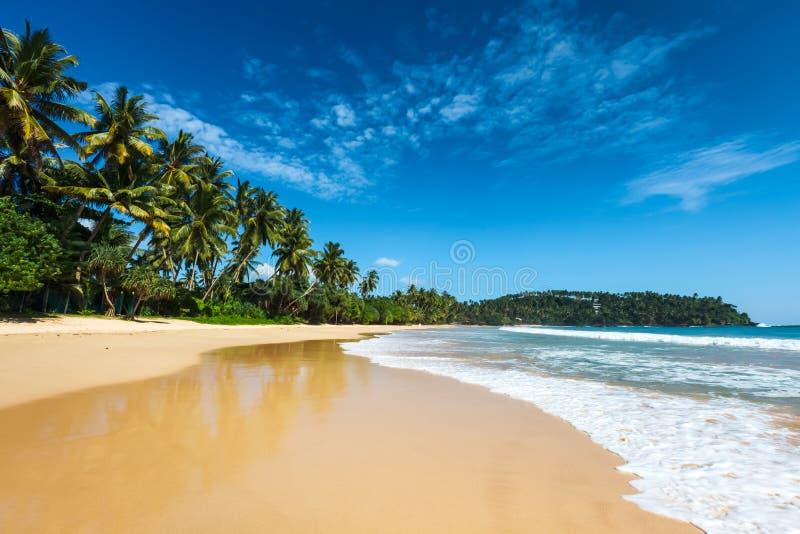 sätta på land idylliskt Sri Lanka arkivbilder
