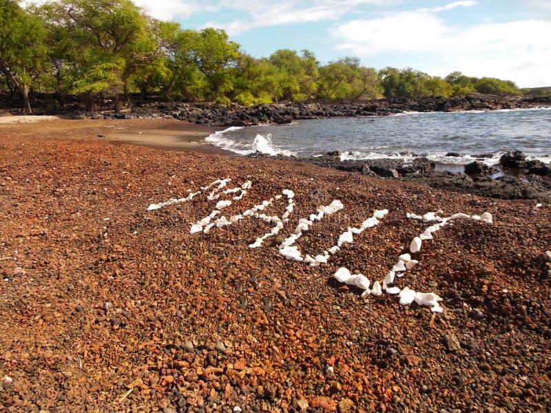 sätta på land korall royaltyfri bild