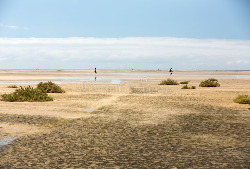 Sätta på land Playa de Sotavento, kanariefågelön Fuerteventura royaltyfria bilder