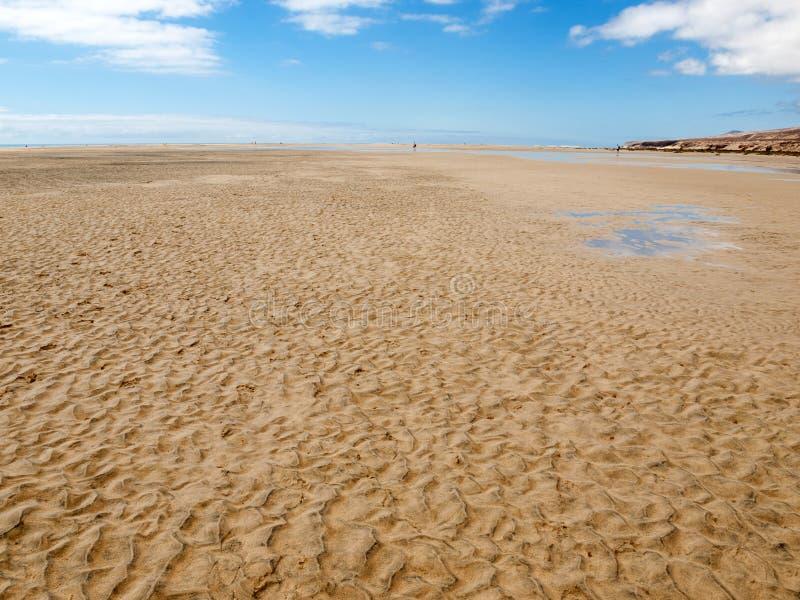 Sätta på land Playa de Sotavento, kanariefågelön Fuerteventura royaltyfri foto