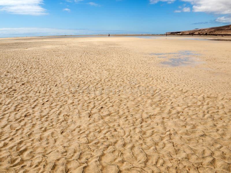 Sätta på land Playa de Sotavento, kanariefågelön Fuerteventura royaltyfri fotografi