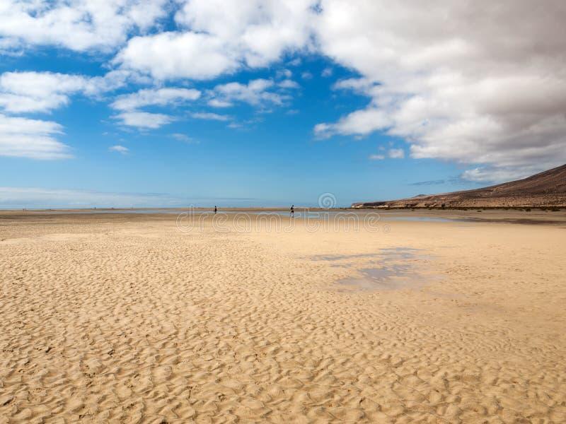 Sätta på land Playa de Sotavento, kanariefågelön Fuerteventura fotografering för bildbyråer