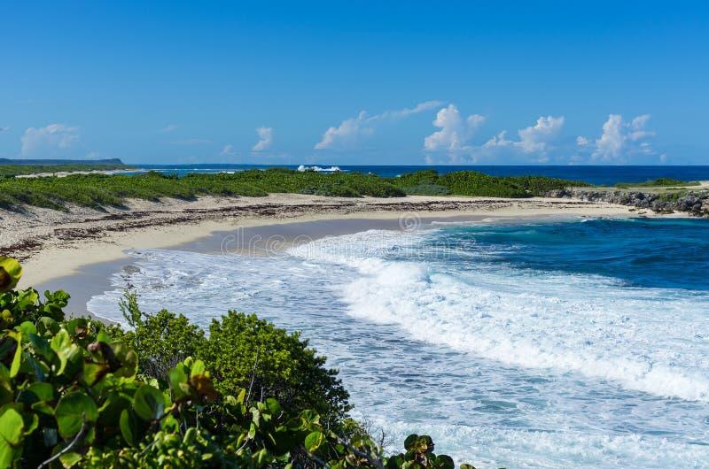 Sätta på land på Pointe des-Chateaux, Guadeloupe som är karibisk royaltyfri fotografi