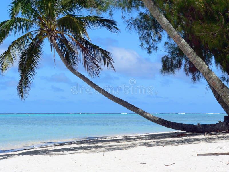 sätta på land sceniskt tropiskt royaltyfri foto