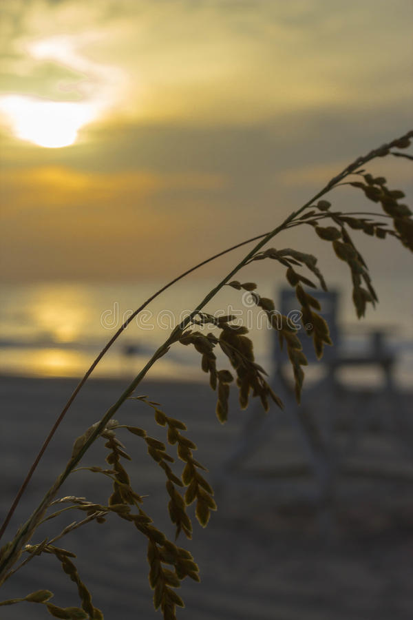 sätta på land soluppgången royaltyfri foto
