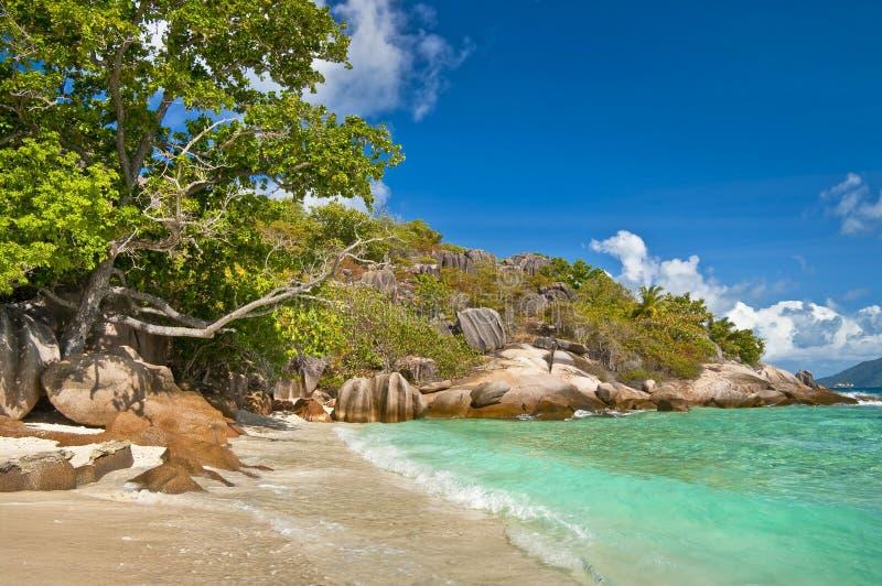 sätter på land seychelles royaltyfria bilder