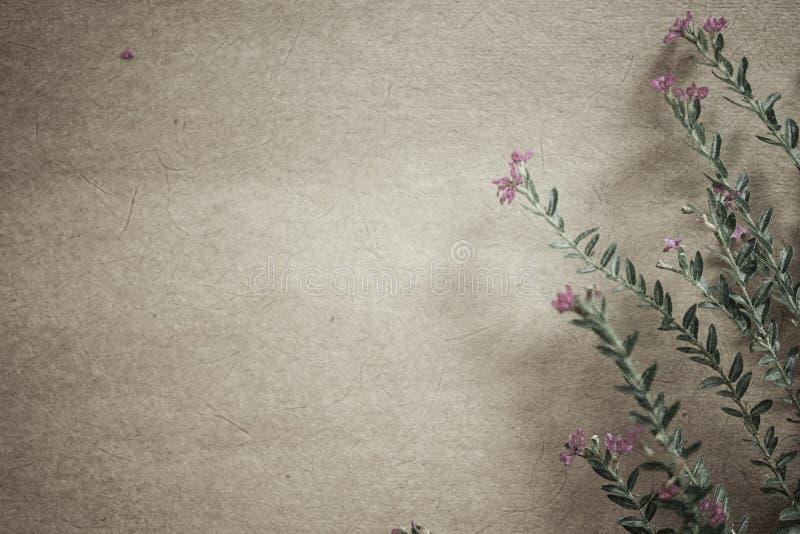 Säubern Sie Blumen in der Weinlesefarbart auf Maulbeerpapierbeschaffenheit lizenzfreies stockbild