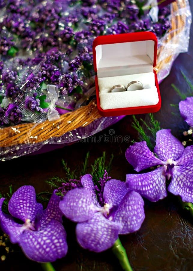 Säubern von Ringen im Kasten stockfoto