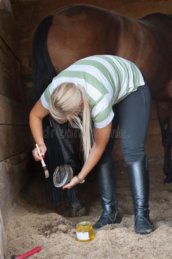 Säubert einen Huf des Pferds lizenzfreies stockbild