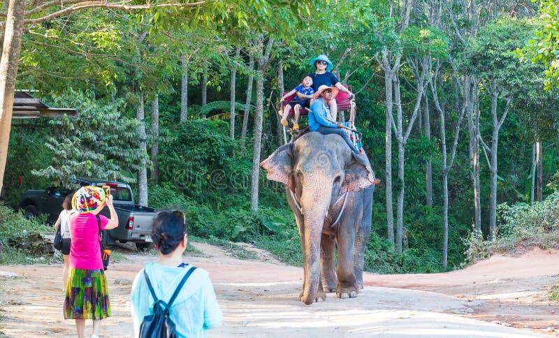 Słoń jazda w Thailand w dżungli obrazy stock