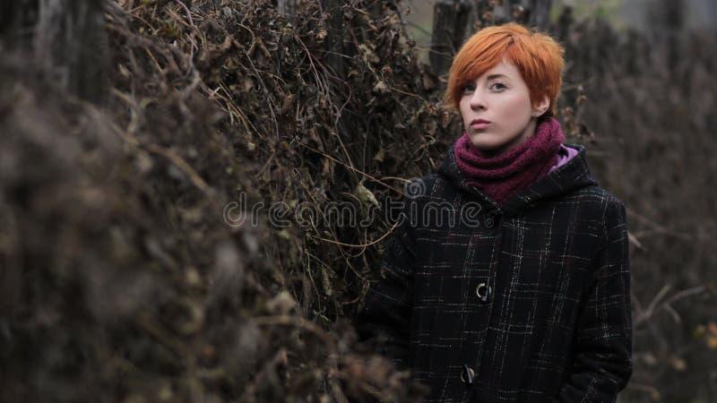 Słodka miedzianowłosa dziewczyna w czarnym żakiecie purpura dziającym szalik i stoi ogrodzeniem przerastającym z winoroślą, blusz obrazy stock