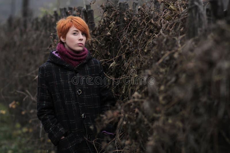 Słodka miedzianowłosa dziewczyna w czarnym żakiecie purpura dziającym szaliku i stoi bezczynnie ogrodzenie przerastającego z wino fotografia royalty free