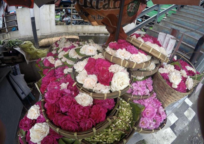 Sådde blommor royaltyfria bilder