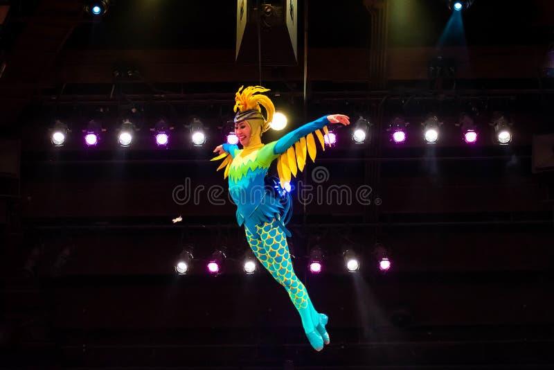 Sångare och dansare i festivalen av Lion King i djurriket på Walt Disney World 4 royaltyfri fotografi