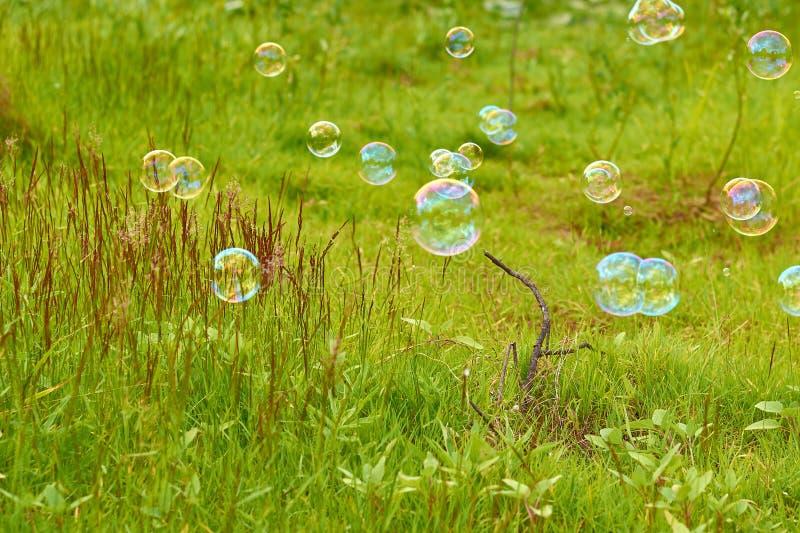 Såpbubblor på en grön fältfluga downwind Begreppet av lightness och airiness arkivfoton