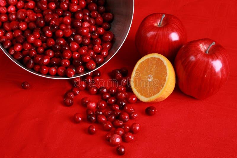 sås för cranberryingrediensnjutning royaltyfria bilder