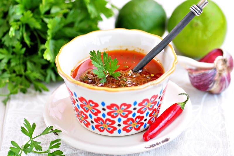 Sås-marinad för fisk eller kött med koriander, persilja, spiskummin, chili, olivolja och vitlök royaltyfria foton