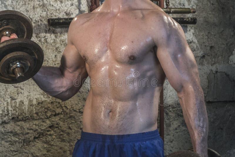 Séance d'entraînement de corps de Fittnes musculaire images libres de droits